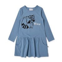 Friendly Racoons Dress - Muted Blue